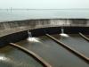 Dam near Abobo.